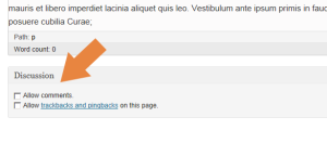 Disabling Comments from WordPress page